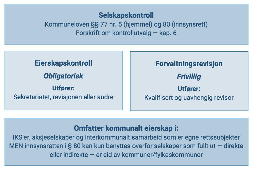 Figur 4 Selskapskontroll En Overordnet Skisse